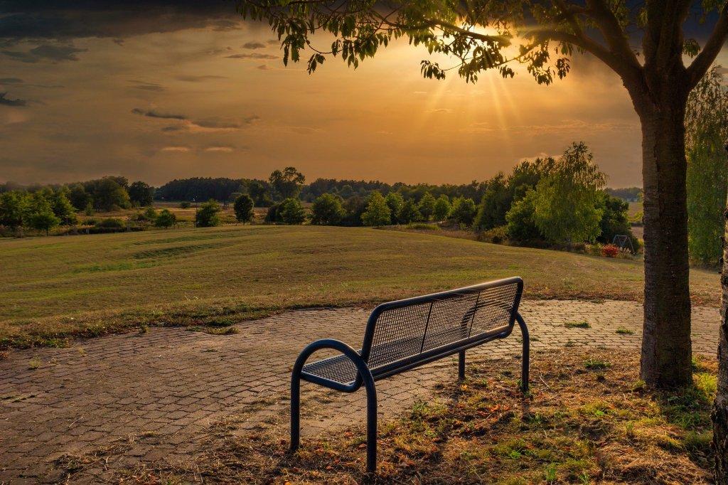 La imagen muestra: un prado, dónde se puede ver un banco vacío junto a un árbol. Delante del banco, separando este del cesped, un camino de ladrillos rectangulares, formando un semicírculo. Unas nubes al fondo y el sol cayendo, completan la escena de una puesta de sol.