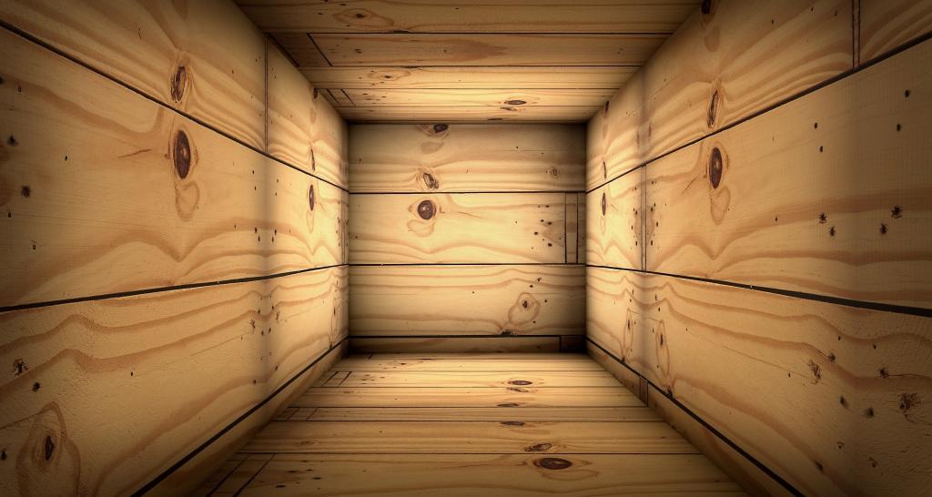 Imagen, en forma de ilustración digital, del interior de una caja de madera. Más larga que ancha. Simulando un ataúd antiguo. La vista está dirigida desde el interior de uno de sus lados más estrechos. Dónde iría la cabeza o los pies.