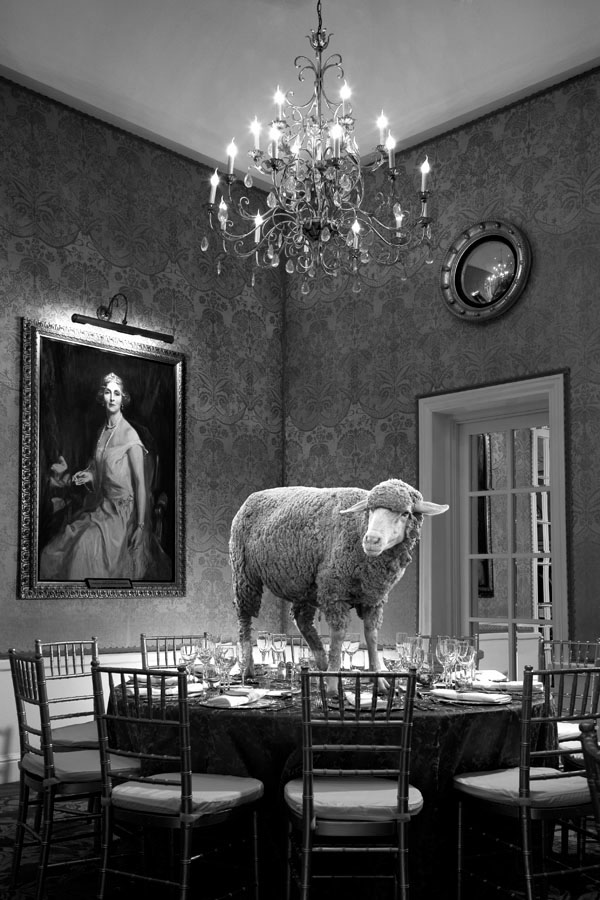 Fotomontaje, en blanco y negro, donde se puede ver a una oveja subida en una mesa redonda, que tiene dispuesta toda la cristalería y cubertería para el servicio de la comida. Ocho sillas rodean la mesa. Un cuadro a la izquierda de una señora, parece contemplar la escena. A la derecha una puerta de cristales divididos en rectángulos.